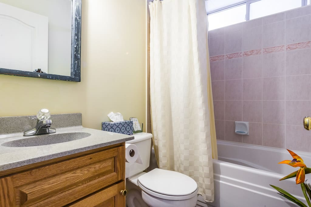 Furnished student housing rentals accommodations vancouver 14